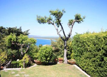 Thumbnail 2 bed detached house for sale in Ansedonia, Orbetello, Grosseto, Tuscany, Italy