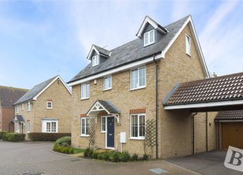 Thumbnail 4 bed detached house for sale in Sheldrick Link, Springfield, Chelmsford, Essex