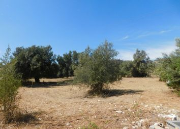 Thumbnail Land for sale in Santa Barbara De Nexe, Faro, Algarve, Portugal