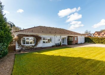 Thumbnail 4 bedroom detached bungalow for sale in 6 Forrestfield Crescent, Newton Mearns