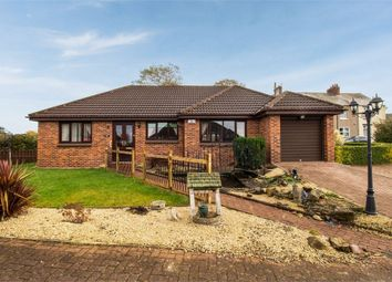 Thumbnail 3 bed detached bungalow for sale in Meadow Close, Coxhoe, Durham
