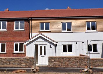 Thumbnail 3 bed terraced house for sale in Coly Road, Colyton