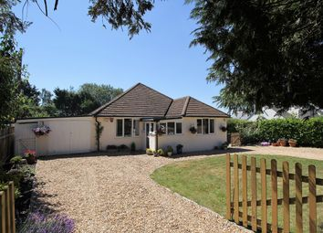 Thumbnail 3 bed detached bungalow for sale in Paice Lane, Medstead, Hampshire
