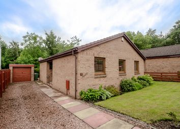 Thumbnail 3 bed bungalow for sale in Briarhill Avenue, Dalgety Bay