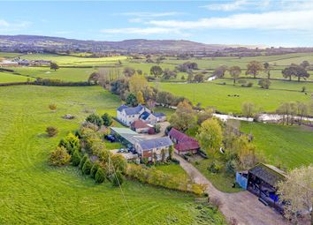 Thumbnail 5 bed equestrian property for sale in Westwater, Axminster, Devon