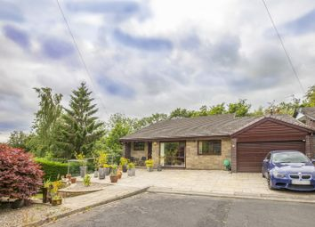 Thumbnail 5 bed property for sale in Cottinglea, Morpeth