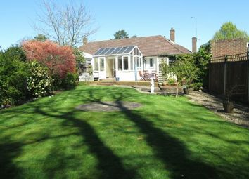 Thumbnail 2 bed semi-detached bungalow for sale in Blackmoor Wood, Ascot, Berkshire