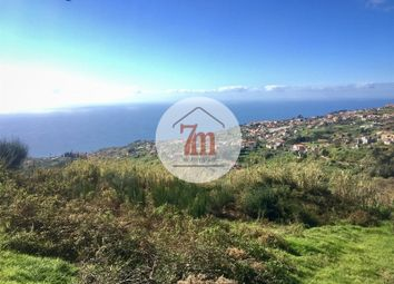 Thumbnail Land for sale in Ponta Do Sol, Ponta Do Sol, Ponta Do Sol