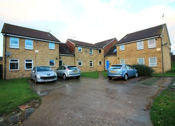 Thumbnail Studio for sale in Whimbrel Close, Sittingbourne