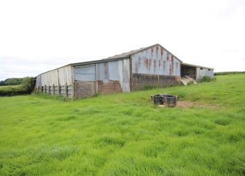 Thumbnail Barn conversion for sale in Broadwoodkelly, Winkleigh
