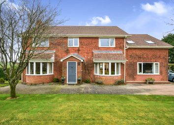 Thumbnail 5 bed equestrian property for sale in Moreleigh, Totnes, Devon, .