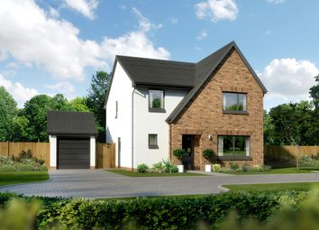 "4 bed detached house for sale in ""Hawthorne"" at Ballumbie, Dundee DD4"