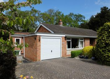 Thumbnail 3 bed bungalow for sale in Eastwood, Horse Lane Orchard, Ledbury, Herefordshire