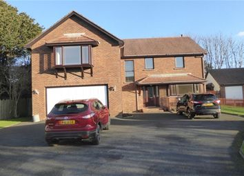 Thumbnail 6 bed property to rent in The Willows, Ballasalla, Isle Of Man