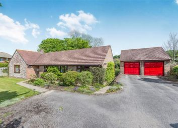 Thumbnail 3 bed detached bungalow for sale in The Spinney, Broadmayne, Dorchester