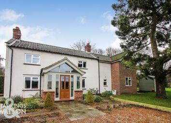 Thumbnail 4 bed detached house for sale in Seething Road, Kirstead, Norwich