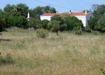 Thumbnail 6 bed farmhouse for sale in Alcantarilha, Portugal