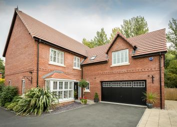 Thumbnail 5 bed detached house for sale in Chaworth Close, Alfreton