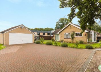 Thumbnail 3 bedroom bungalow for sale in Old London Road, Wheatley, Oxford