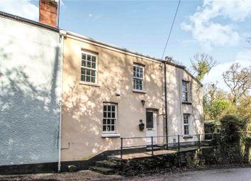 Thumbnail 2 bedroom terraced house for sale in St. Giles, Torrington