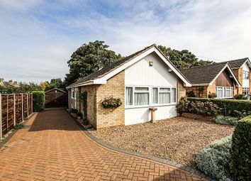 Thumbnail 3 bedroom detached bungalow for sale in Melrose Gardens, Newmarket