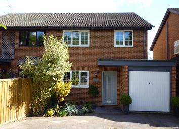 Thumbnail 4 bed semi-detached house to rent in The Mount, Grayswood, Haslemere