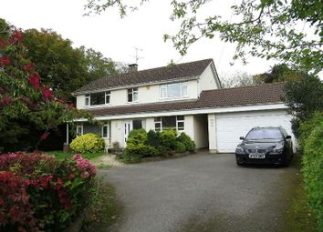 Thumbnail 4 bed detached house to rent in Church Road, Winscombe