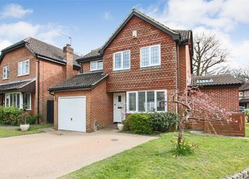 Thumbnail 4 bed detached house for sale in Lowdells Drive, East Grinstead, West Sussex