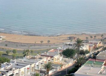 Thumbnail Studio for sale in La Mata, Alicante, Spain