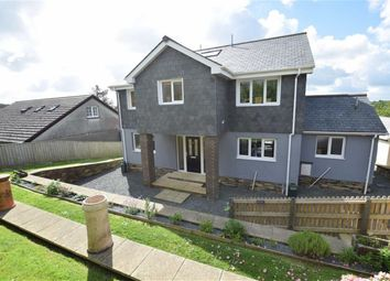 Thumbnail 4 bed detached house for sale in Canal Rise, Bridgerule, Holsworthy