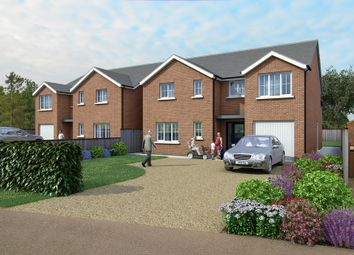 Thumbnail 4 bedroom detached house for sale in Plot 2 Dane Lane, Wilstead