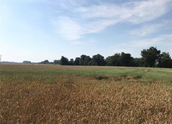 Land for sale in Wisbech St Mary, Cambridgeshire PE13