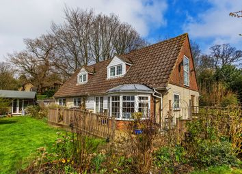 Thumbnail 4 bed detached bungalow for sale in The Walk, Tandridge, Oxted
