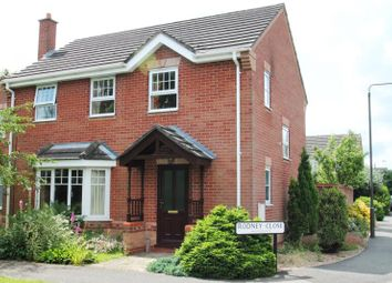 Thumbnail 4 bed detached house to rent in Rodney Close, Hilton, Derbyshire