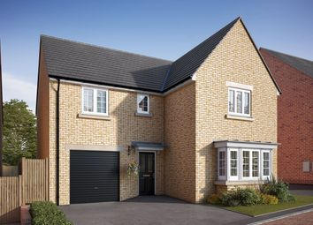 """Thumbnail 4 bed detached house for sale in """"The Grainger"""" at Uffington Road, Barnack, Stamford"""