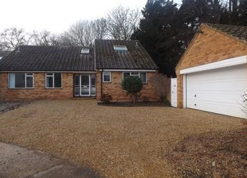 Thumbnail 4 bed bungalow to rent in Selwyn Close, Great Shelford, Cambridge