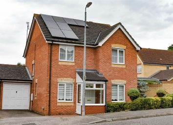 Thumbnail 4 bed detached house to rent in Bridport Way, Braintree