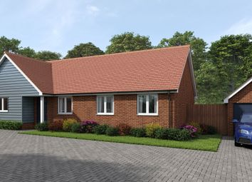 Thumbnail 4 bed detached bungalow for sale in Andrew Burtts Close, Framlingham