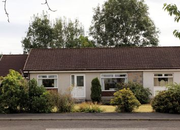 Thumbnail 3 bed bungalow for sale in Hollybush Crescent, Crieff