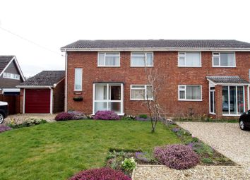 Thumbnail 4 bedroom semi-detached house to rent in Bridge Road, Silfield, Wymondham