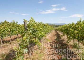 Thumbnail Farm for sale in Italy, Tuscany, Siena, Montepulciano.