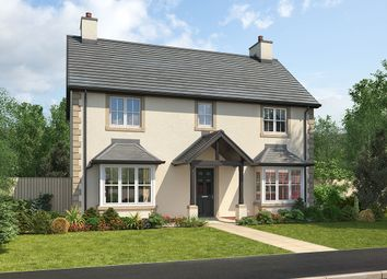 "Thumbnail 4 bedroom detached house for sale in ""Arundel"" at Wilson Howe, Whitehaven"
