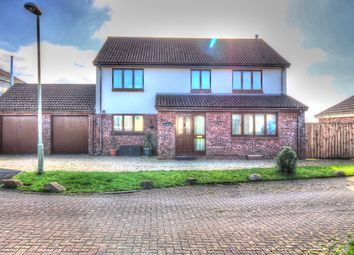 Thumbnail 4 bed detached house for sale in Pound Meadow, High Bullen, Torrington