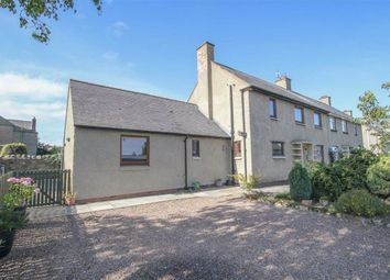 Thumbnail 5 bed semi-detached house for sale in Phillips Place, Lowick, Berwick Upon Tweed