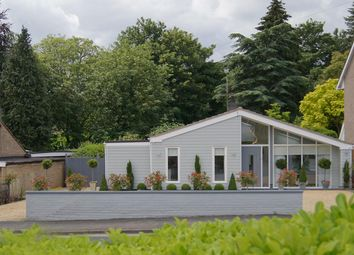 Thumbnail 4 bedroom bungalow for sale in Vine Lodge, Vinery Road, Bury St. Edmunds