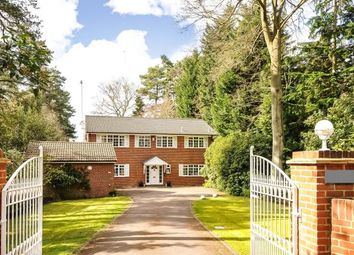 Thumbnail 4 bedroom detached house for sale in South Ascot, Berkshire