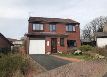 Thumbnail 4 bedroom detached house to rent in Royal Oak Gardens, Alnwick, Northumberland