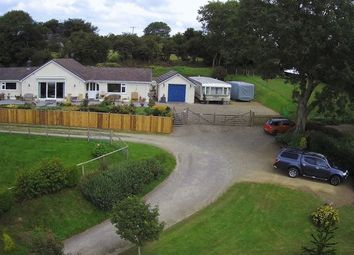 Thumbnail 4 bed detached house for sale in Llwyndafydd Road, Llwyndafydd, Llandysul