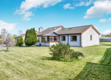 Thumbnail 4 bed detached bungalow for sale in Plantation Road, Portadown