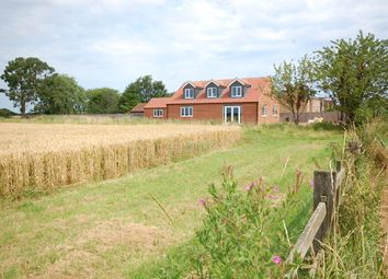 Thumbnail 3 bed detached house for sale in Main Road, Saltfleetby, Louth